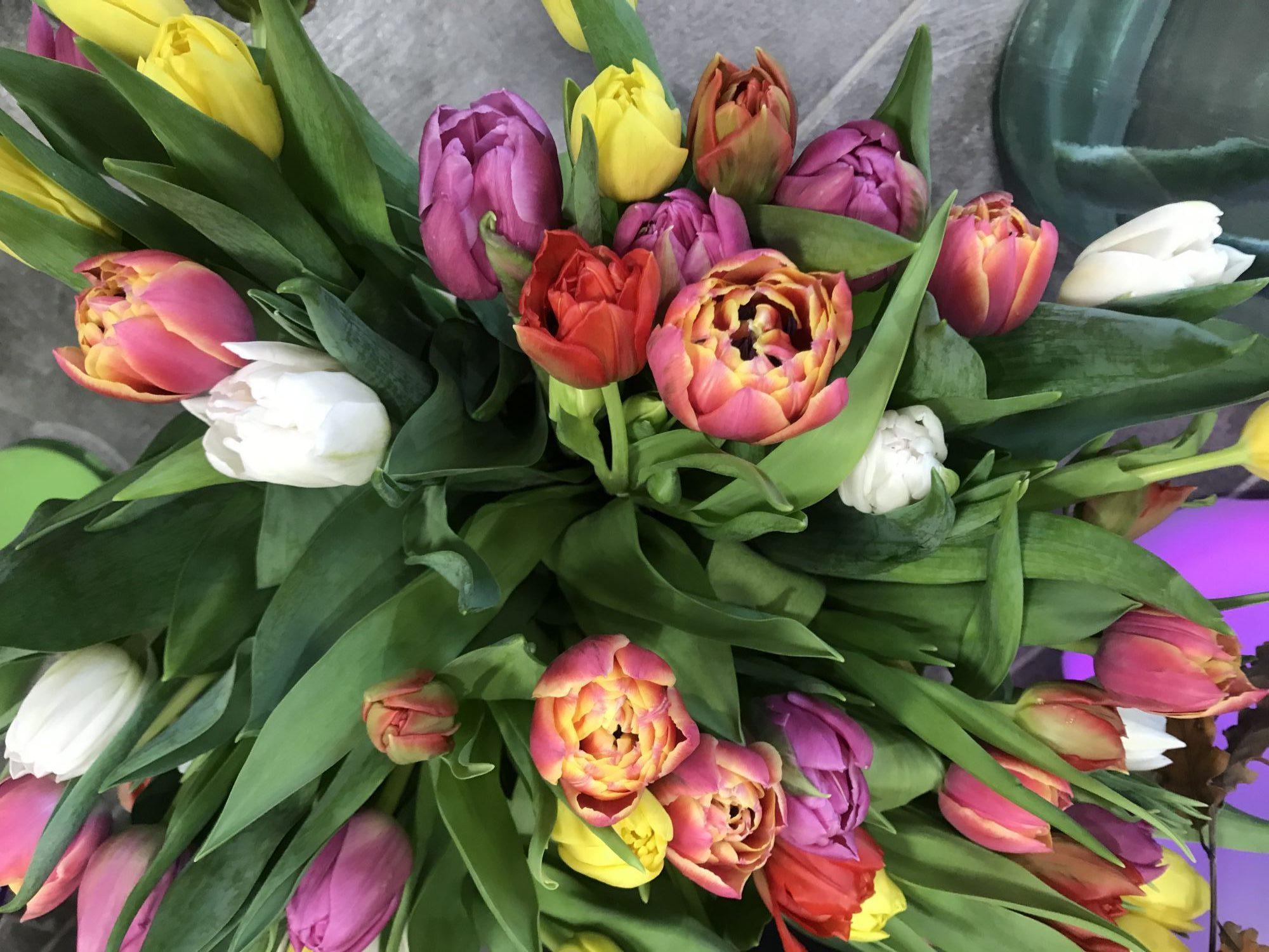 bouquet-de-tulipes